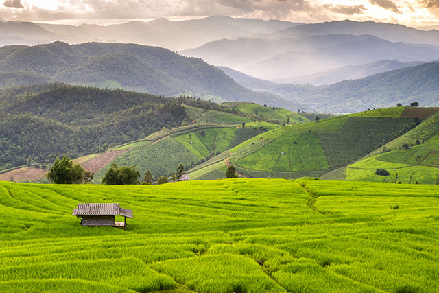 Baan Pa Bong Pieng - 10 Places to Discover the Essence of Chiang Mai